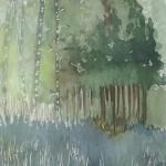 image (16) (Copier)
